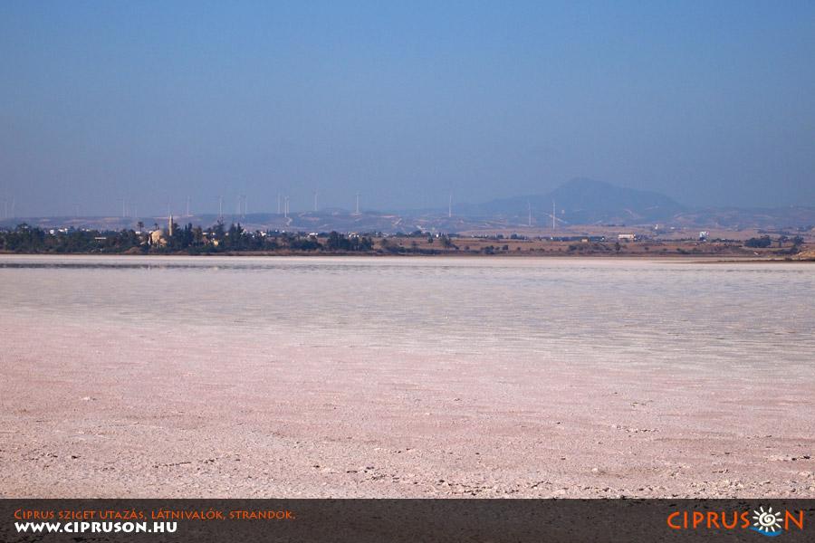 Larnaka sós tó