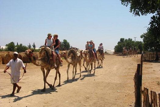 Larnaka tevepark, Ciprus
