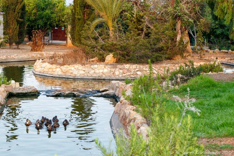 Páfosz állatkert Ciprus