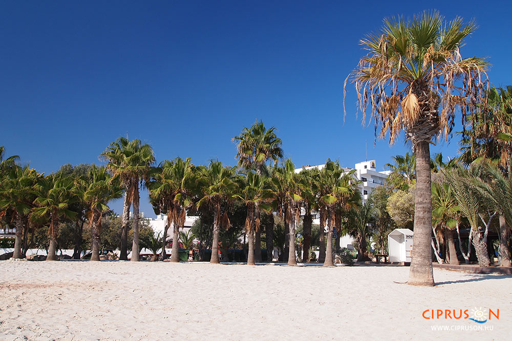 Nyaralás Agia Napa városban, Ciprus