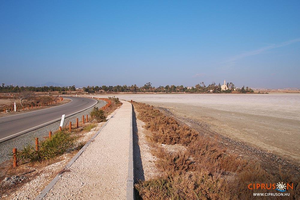 Larnakai sós tavat Larnaca látnivalói között tartják számot