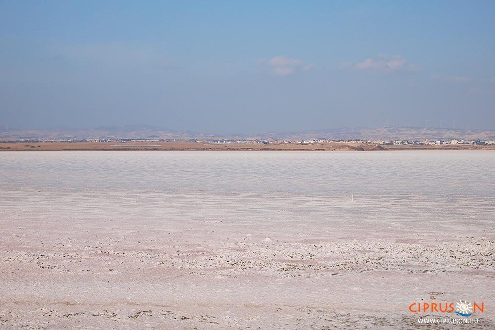 Larnaka híres sós tava